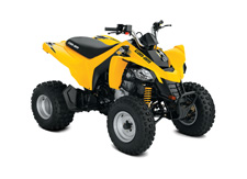 An ATV for riders age 14 and up, the DS 250 sports an energetic 250cc liquid-cooled engine with a Continuously Variable Transmission (CVT). This vehicle gives promising riders a chance to show even more of their stuff.