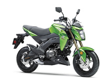 "Small in size. Big on fun. The all-new Kawasaki Z125 PRO is a nimble streetfighter that's designed to defy what a lightweight motorcycle can be. This easy to ride bike delivers the freedom and excitement of motorcycling for new and experienced riders alike. With radical Kawasaki ""Z"" styling, the Z125 PRO is your invitation to the rebellious side of fun."