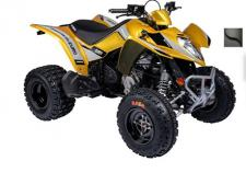 This new sporty model is a dream for the young rider transitioning into full independence.  KYMCO is proudly introducing a NEW anti-theft lock for the steering to protect this vehicle and Maxxis Razr tires for extra traction.  (Available in Gold and Black)