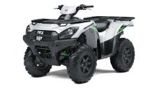 The Kawasaki Brute Force 750 4x4i EPS ATV is built strong to dominate the most difficult trails. Backed by over a century of Kawasaki Heavy Industries, Ltd. (KHI) knowledge and engineering, the Brute Force 750 4x4i EPS is a thrilling adventure ATV that refuses to quit.