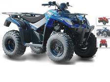 Utilitarian yet fun, this versatile and low maintenance ATV is perfect for a transitional rider who knows how to work and play. Cargo racks and tow hitch help you get the job done and play in the mud after. (Available in Red & Blue)