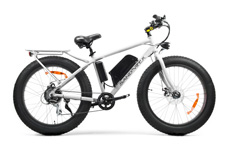 With a 500 watt 48V motor, the SSR Motorsports Sand Viper fat bike has a top speed of 20MPH, a range of 25 miles, and only weighs 53 pounds. Available in Black, White, or Red.