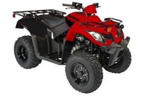 Utilitarian yet fun, this versatile and low maintenance ATV is perfect for a transitional rider who knows how to work and play. Cargo racks and tow hitch help you get the job done and play in the mud after.