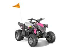 If They Like to Ride, They'll Love to Drive. Share the love of off-roading with your kids by starting them early. The Outlaw® 110 EFI is perfect for young drivers ages 10 and older with adult supervision, delivering reliable performance and standard safety features.      Ages 10+     Electronic Fuel Injection     Parent Adjustable Speed Limiting     Comes Standard with 1 Youth Helmet and Training DVD     Electric Start     Safety Tether