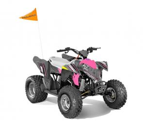 Share the joy of off-roading with your kids by educating them early. The Outlaw� 110 is perfect for young drivers ages 10 and older with adult supervision, delivering reliable performance and standard safety features. The Outlaw� 110 comes standard with one youth helmet, safety tether, daytime running lights, safety whip flag, speed limiting adjuster, and a training DVD.
