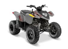 Introduce your kids to the joys of off-roading with the Phoenix®   200. This ATV is designed for young drivers ages 14 and older, with adult supervision for riders under 16. Delivering reliable performance, automatic PVT transmission, and standard safety features. Ages 14+ Electronic Fuel Injection Parent Adjustable Speed Limiting Comes Standard with 1 Youth Helmet and Training DVD Electric Start Safety Tether