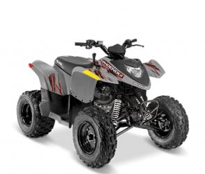 Introduce your kids to the thrill of off-roading with the 2020 Phoenix® 200. This ATV is engineered for young drivers ages 14 and older, with adult supervision for riders under 16. 2020 Phoenix® 200 delivers reliable performance, automatic PVT transmission, and standard safety features.