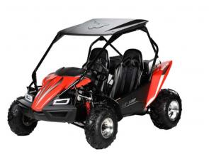 The Hammerhead LE 150 is the newest edition to the Hammerhead line up. By incorporating a modern brushguard design, additional plastic side panels, super-bright LED headlights and an elegant dash this kart has it all.