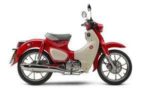 There's a reason the Honda Super Cub is the world's most-produced motor vehicle. Because nothing else combines fun, affordability, practicality, sensible size and ease of operation the way a Cub does. Our 2020 model features the same timeless, classic look, but with technology that's right up to date, including features like a 125cc engine and standard anti-lock brakes. And check out the new color this year: Pearl Nebula Red.