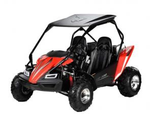 The Hammerhead LE 150 is the newest edition to the Hammerhead line up. By incorporating a modern brushguard design, additional plastic side panels, super-bright LED headlights and an elegant dash this kart has it all. The LE 150 also has a large cargo area and comes with all of the standard features you have come to expect such as a 150cc oil-cooled engine, manual-choke start, and Hammerhead shark-tread CST tires.