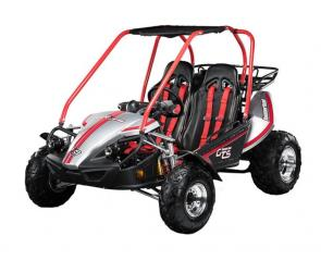 The Hammerhead GTS 150 Platinum Edition incorporates the unique styling of our GTS 150 combined with advanced features such as nitrogen gas shocks, brushed aluminum wheels and added curb appeal. The only stock go kart to be outfitted with performance shocks, drivers can now maintain top-tier performance in hardcore off-road conditions. SHOCKING isn't it?!?